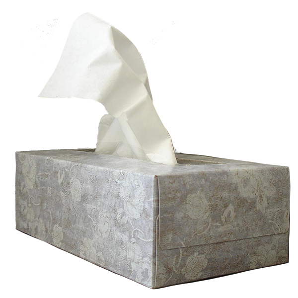 Kleenex-type paper facial tissues.