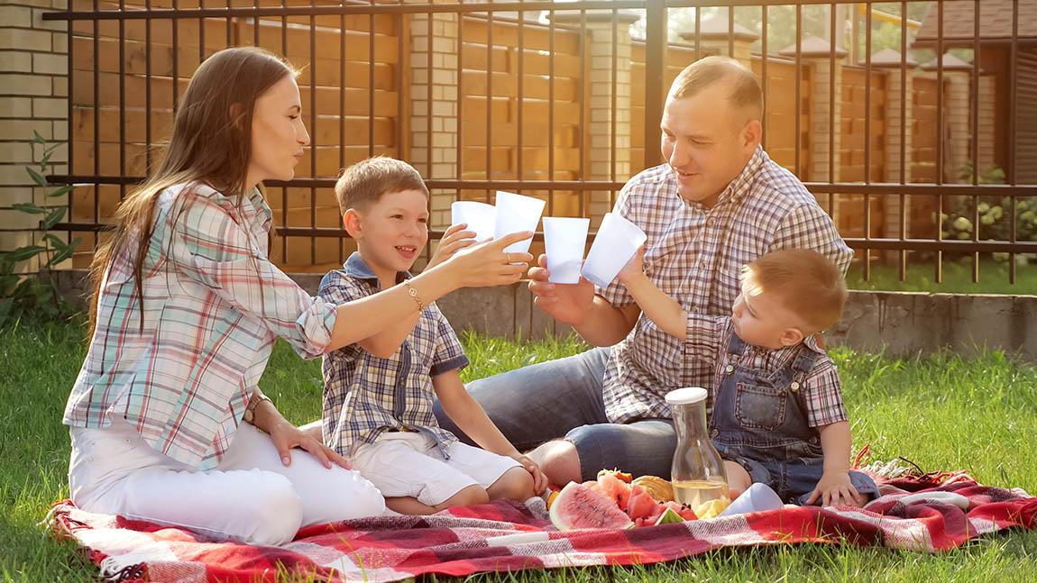 Post coronavirus quarantine, enjoy summer with backyard picnic