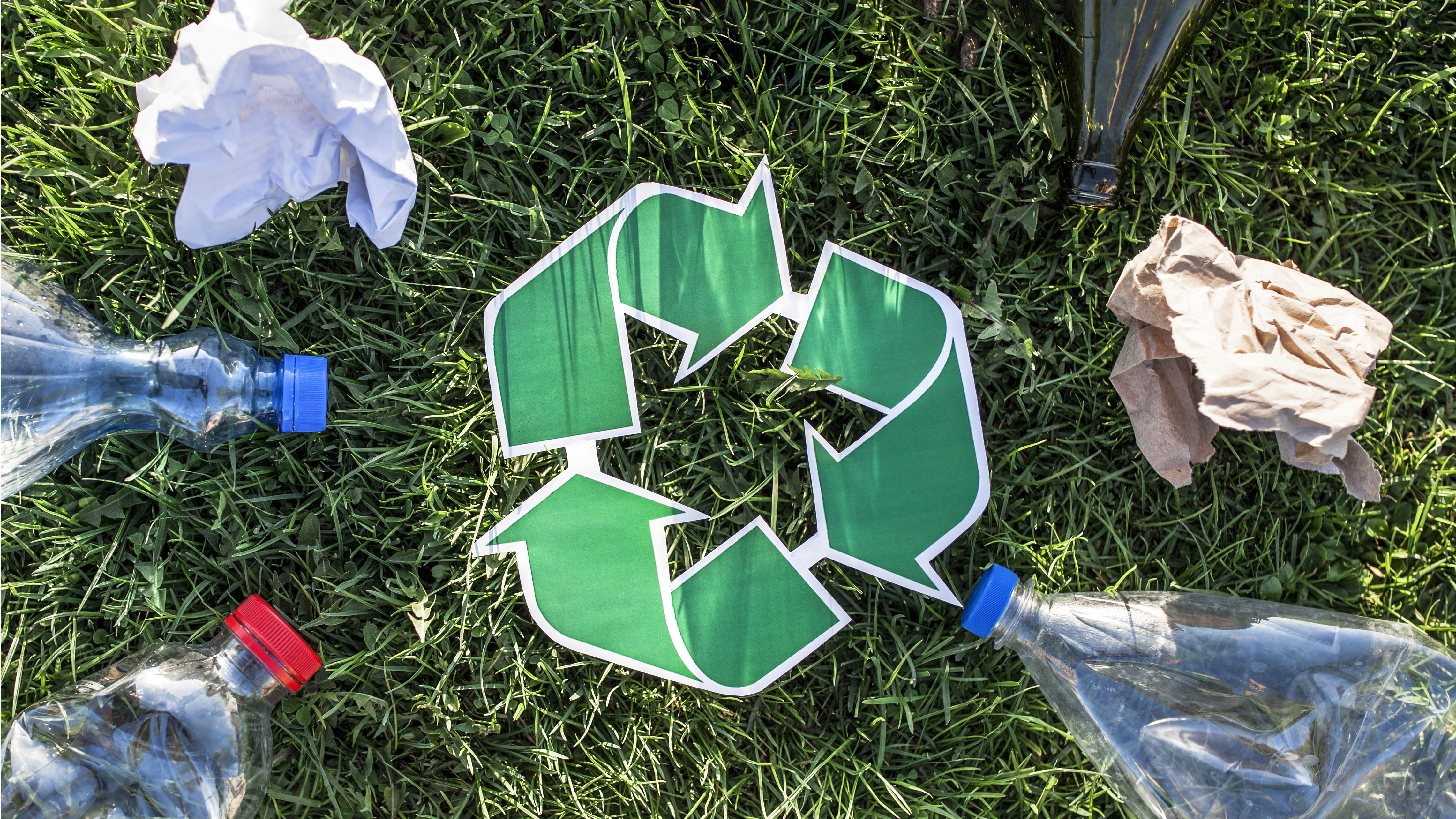 Image_3_Bad_Recycling_Small