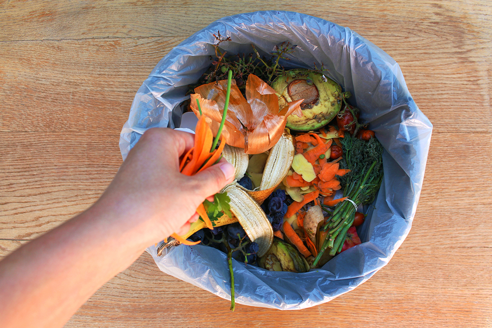 Food waste going to compost bin